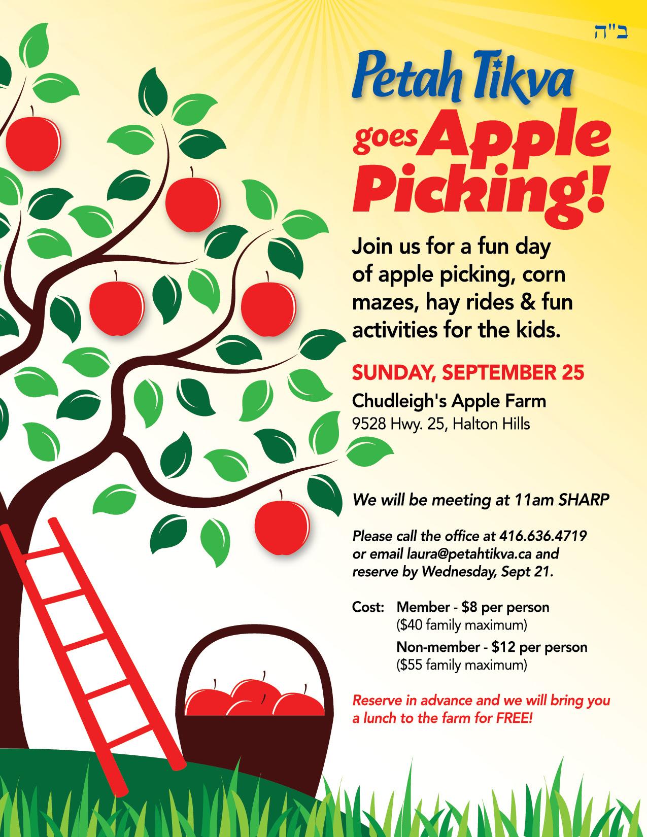 Petah Tikva goes Apple Picking